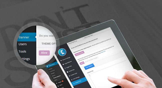 new moment wordpress theme theme options