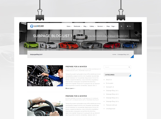 luxicar wordpress free multimedia page